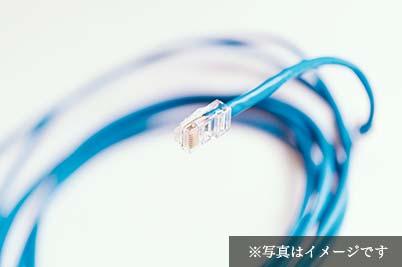 [客室内]有線LANポート