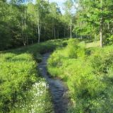 一之瀬せぎ水路敷地の草刈作業について