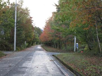 村道.JPG