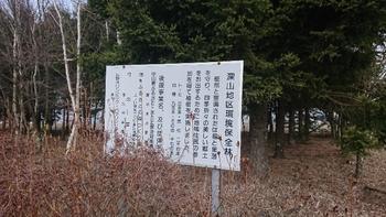 深山地区環境保全林.JPG