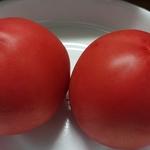 田辺のトマト