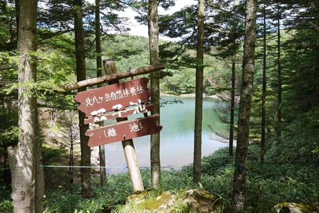 http://www.alpico.co.jp/shikinomori/news/images/245518202325237e3c3877206aaba751ad0f8146.jpg