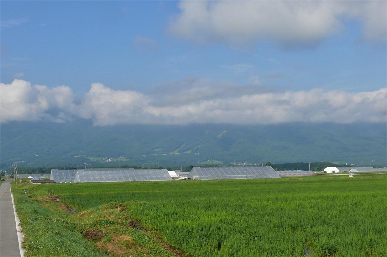 http://www.alpico.co.jp/shikinomori/news/images/P1130181.JPG