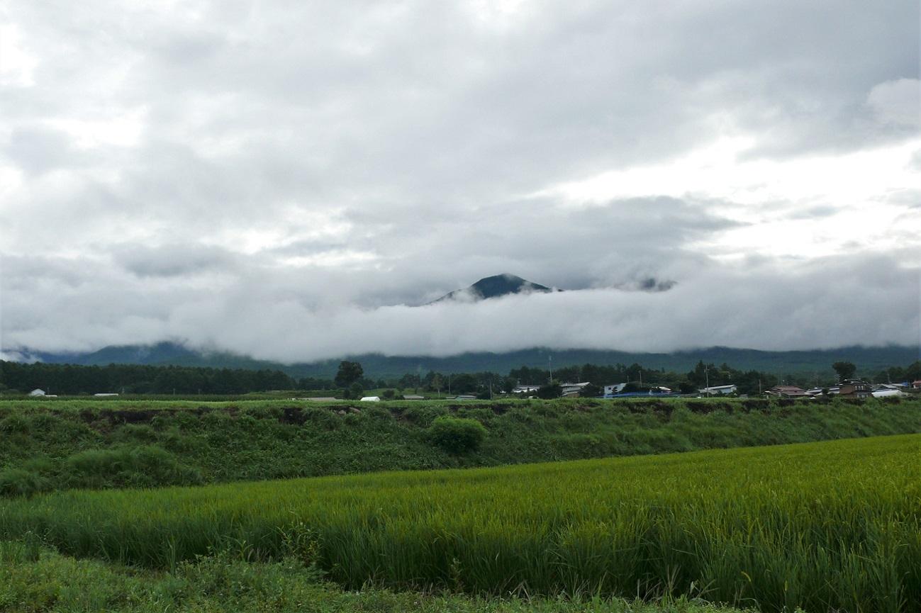 http://www.alpico.co.jp/shikinomori/news/images/P1130726.JPG