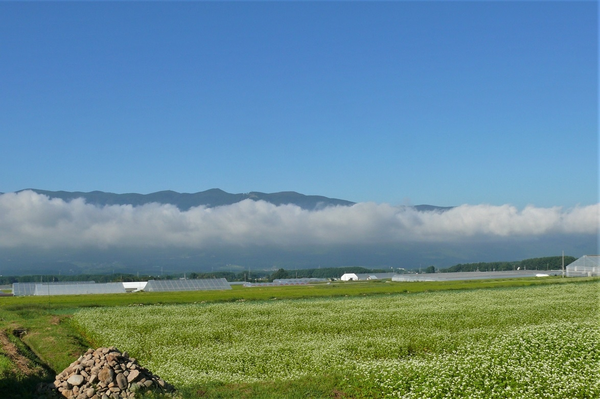 http://www.alpico.co.jp/shikinomori/news/images/P1130938.JPG