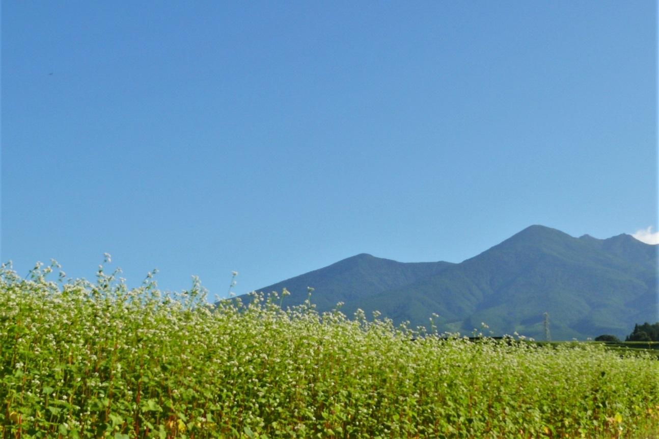 http://www.alpico.co.jp/shikinomori/news/images/P1130994.JPG