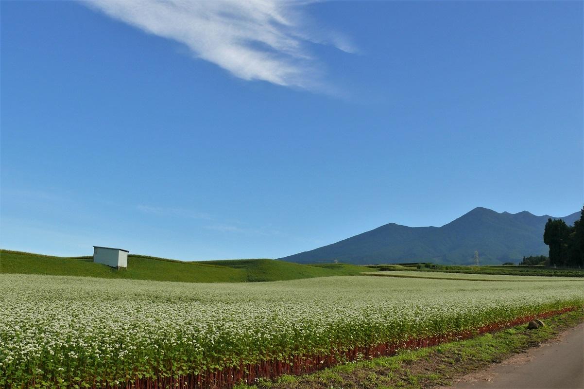 http://www.alpico.co.jp/shikinomori/news/images/P1140237.JPG