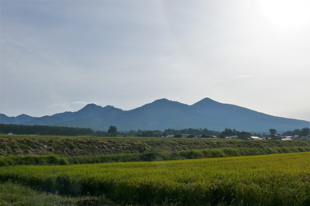 http://www.alpico.co.jp/shikinomori/news/images/P1140278.JPG