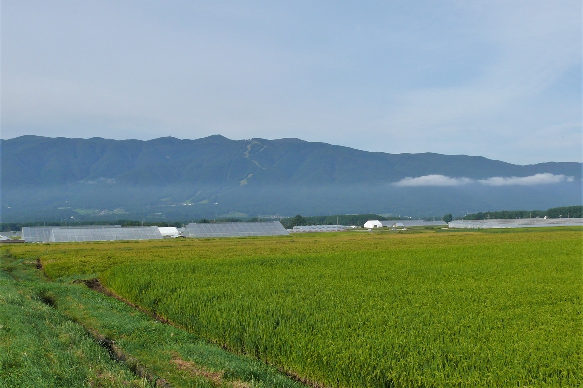 http://www.alpico.co.jp/shikinomori/news/images/P1140280.JPG