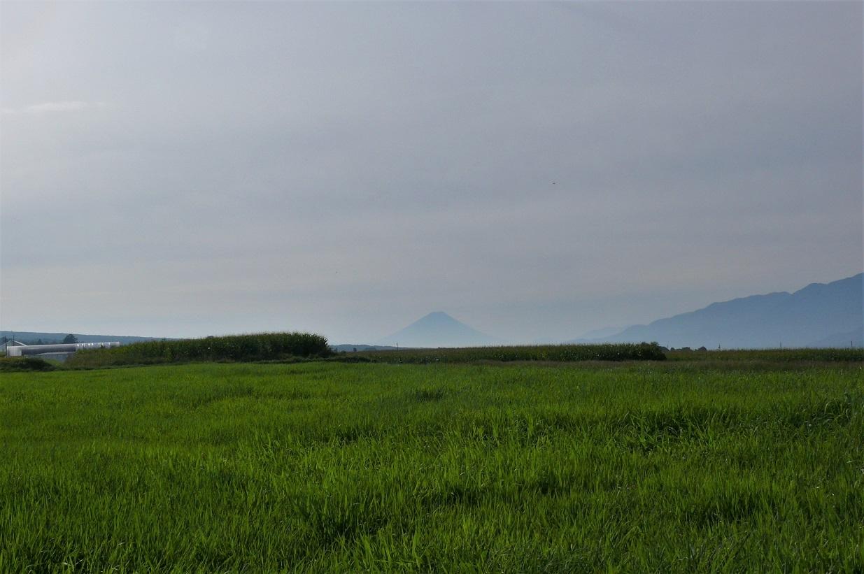 http://www.alpico.co.jp/shikinomori/news/images/P1140281.JPG