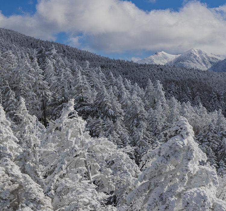 八ヶ岳 イメージ