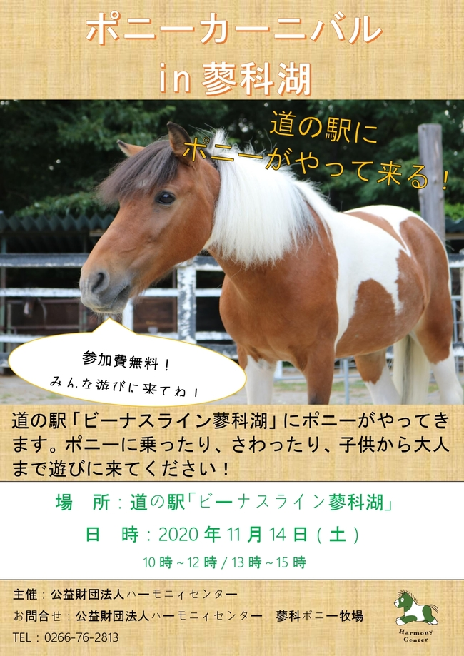 繝√Λ繧キ縲€驕薙・鬧・き繝シ繝九ヰ繝ォ_page-0002.jpg