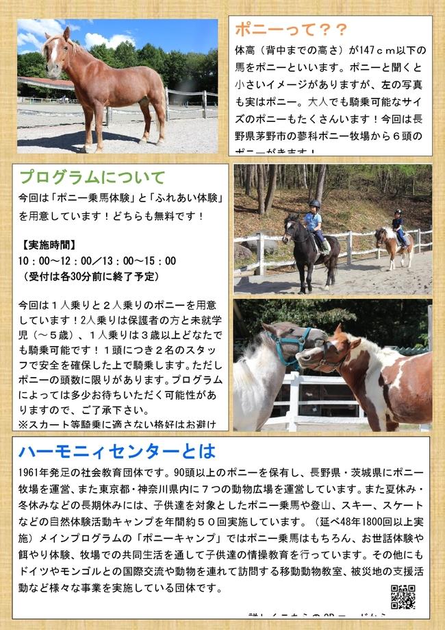 繝√Λ繧キ縲€驕薙・鬧・き繝シ繝九ヰ繝ォ_page-0001.jpg