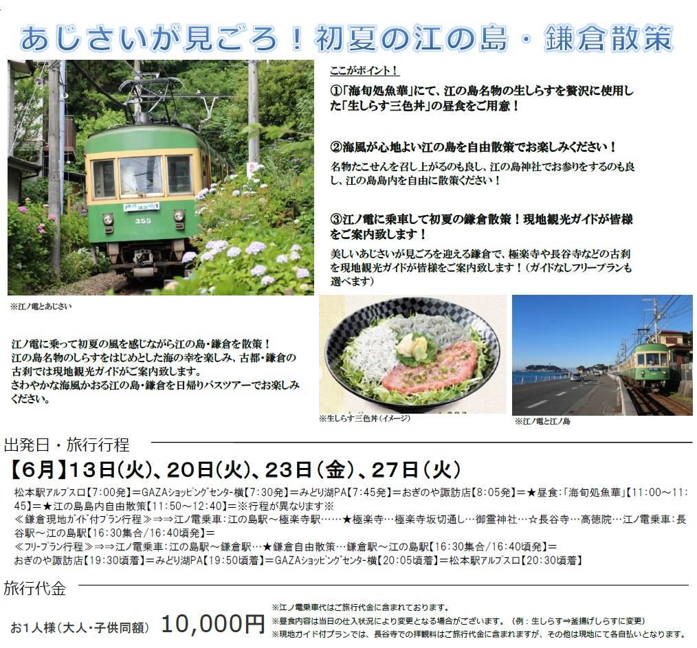 アルピコ交通】6月出発「江の島・鎌倉 日帰りバスツアー